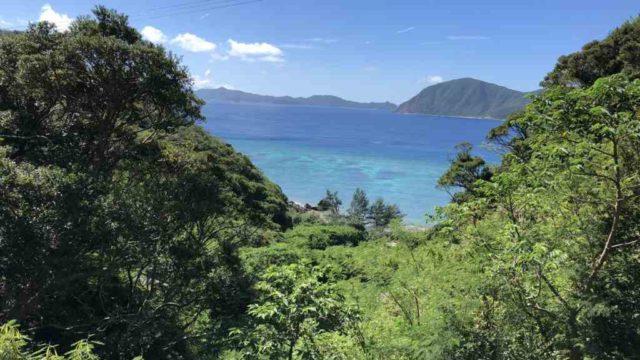奄美大島加計呂麻島ツアーガイド