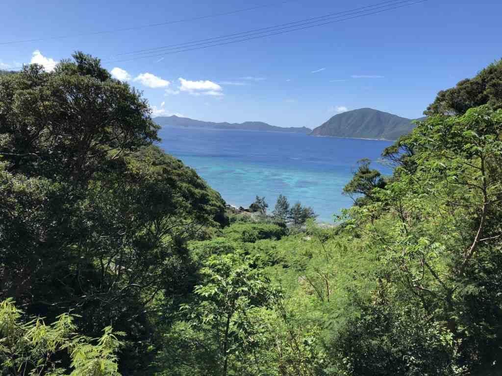 加計呂麻島の海岸
