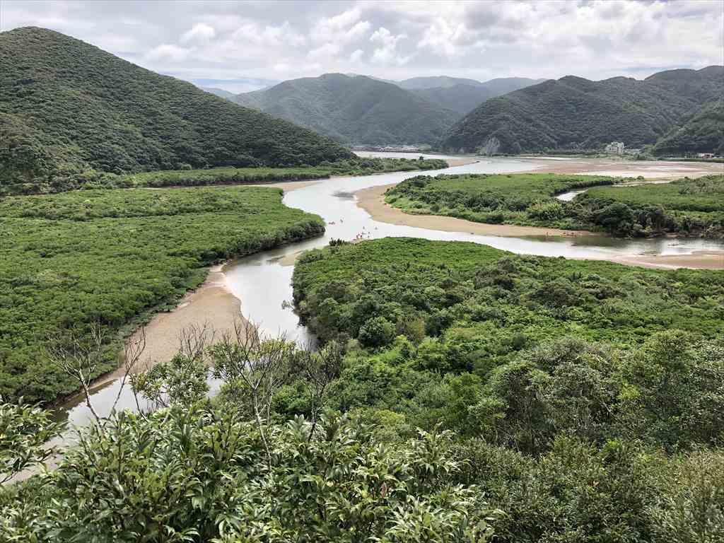 奄美大島黒潮の森マングローブパーク展望台